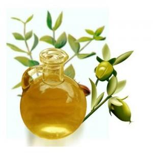 l-huile-de-jojoba-et-son-utilisation-300x300