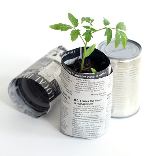 Pots plantes papier journal