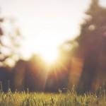 Combattre la déprime saisonnière