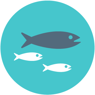 Ecogeste 11 ne pas acheter de poissons en voie de for Acheter des poissons