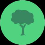 Ecogeste #64 Faire attention à l'origine du bois