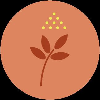 Ecogeste #66 Éviter les pesticides et engrais chimiques