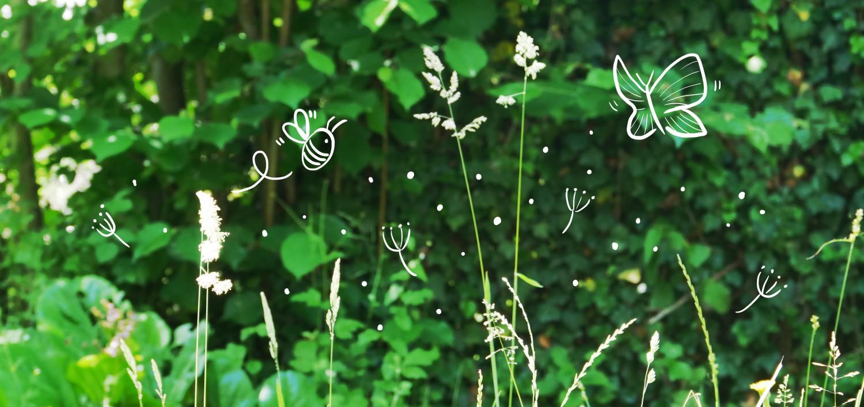 5 remèdes naturels contre les allergies printanières